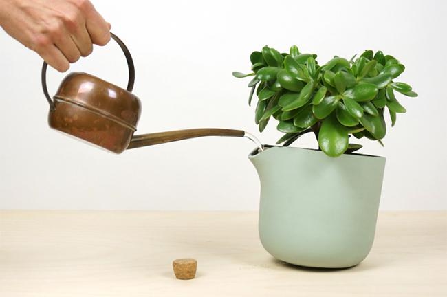 vasos auto regáveis plantas