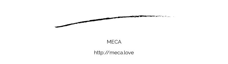 final_meca