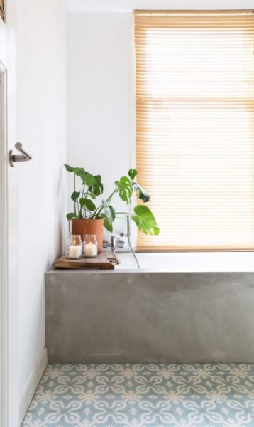 Planta Costela de Adão decorando banheiro